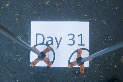 Day 31-DSC_2878-small
